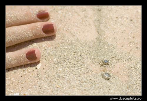 in nisip